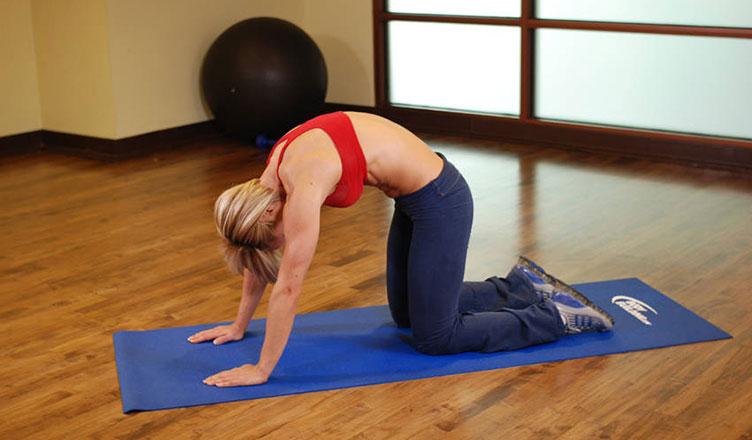 cat-stretch-hareketi