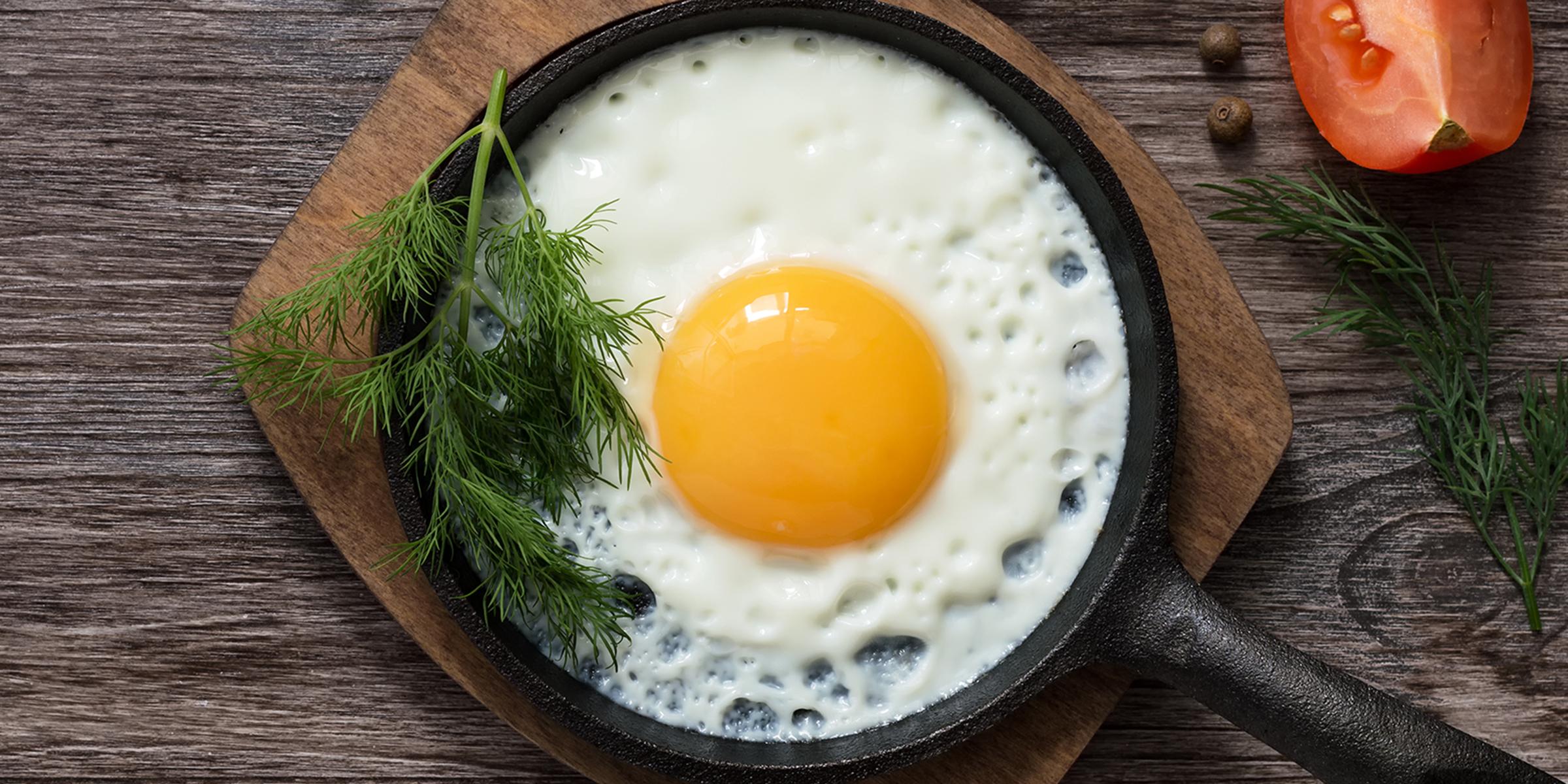 yumurta-kas-yapici