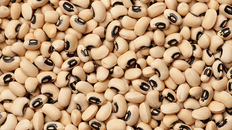 börülce proteinli besinlerden biri