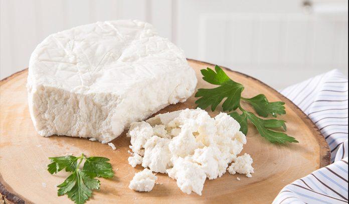lor peynirinde kaç gram protein var?