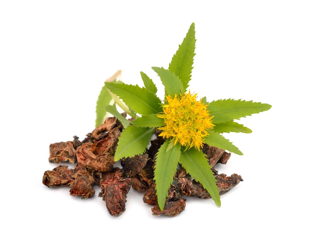 sifalı-bitki